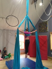 Adult level 3 fabric and trapeze